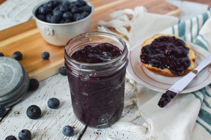 blueberry_chia_jam-4-of-6-1024x681
